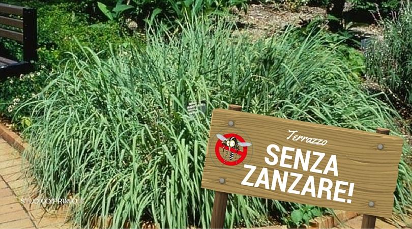 Zzz… Zanzare via dal mio terrazzo! – www.studiodiprimio.it